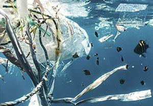 Plasticos-Grupo Fagor